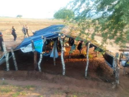 Santa Brígida BA: Polícia Civil localiza plantação de cinquenta mil pés de maconha