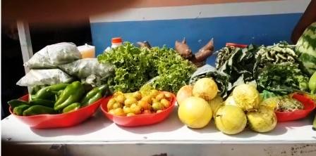 Feira movimenta a Agricultura Familiar no povoado Brejo Grande em Jeremoabo BA