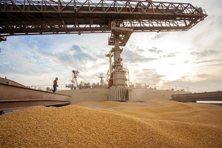 Produtores apontam a alta na exportação do milho como uma das razões da escassez do grão - (Foto: Cláudio Neves/Portos do Paraná)